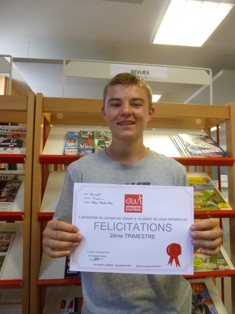 Collégiens et lycéens du Lycée professionnel de Blanquefort (33) distingués ont ainsi reçu le précieux « diplôme » de la Réussite 2017. Apprentis d'Auteuil